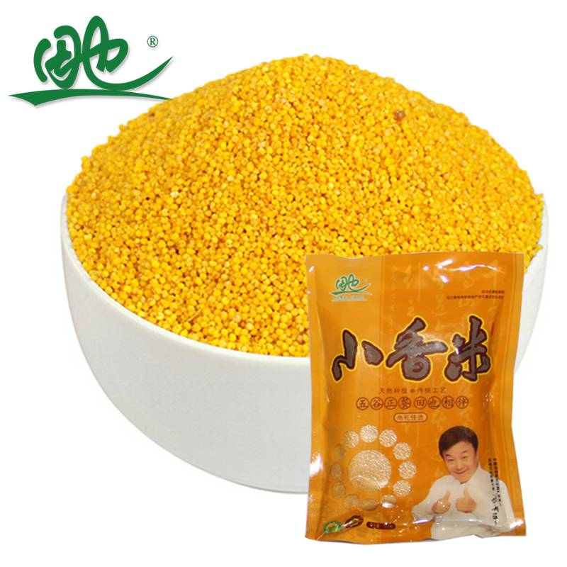 小米小香米优质小米月子小米内蒙古特产纯天然小米杂粮350g小米田也小香米