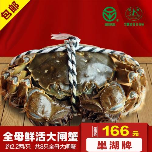 巢湖牌约2.2两/只全母大闸蟹8只礼盒装