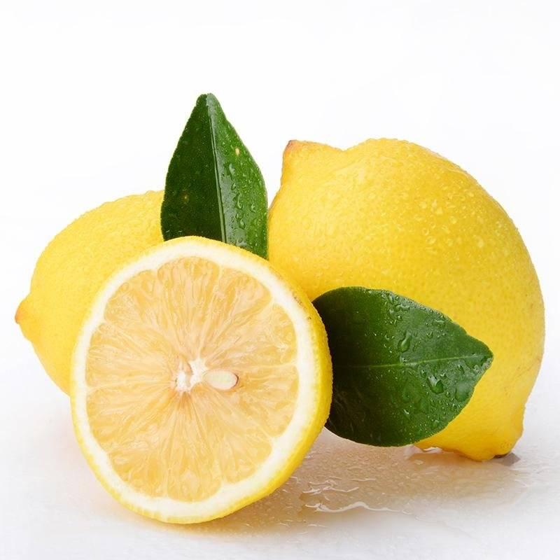 农家自产云南瑞丽市勐秀山(尤力克)柠檬现摘现发云南德宏瑞丽新鲜柠檬包邮黄柠檬1000g